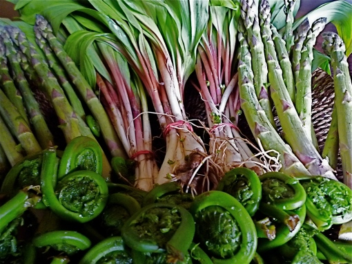 The very first local produce to hit the market: asparagus, ramps (wild leeks) and fiddleheads - May 1, 2009