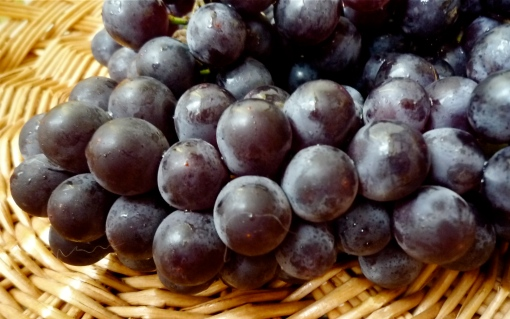 Ontario Grapes