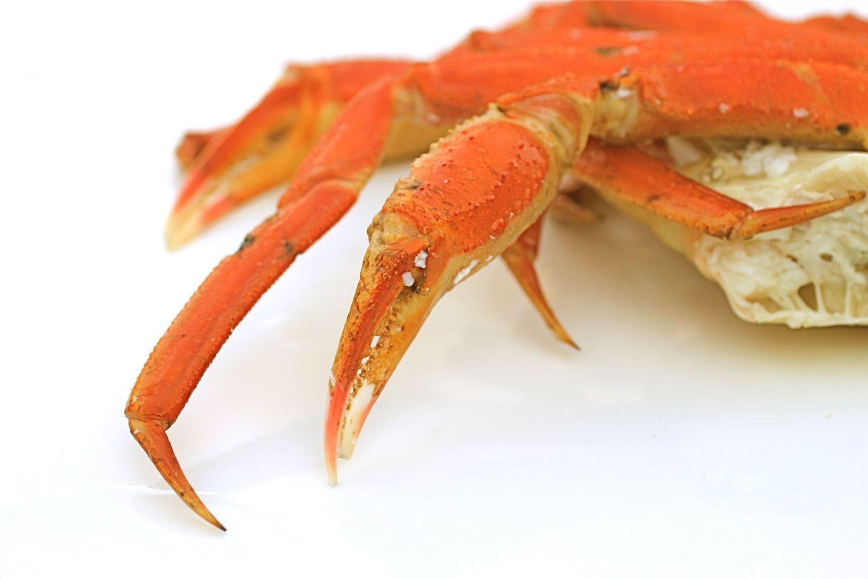 Old-School Comfort Food: The Way I Learned to Cook: Alex Pictures of snow crab legs