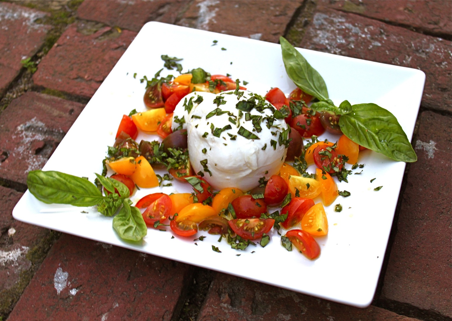 Burrata with heirloom tomatoes and basil makes a great appetizer or ...